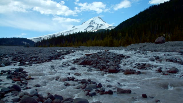 snowy mountain peak behind snowmelt glacial melt stream white river mt. hood spring forest oregon cascade mountains - pacific crest trail stock videos & royalty-free footage