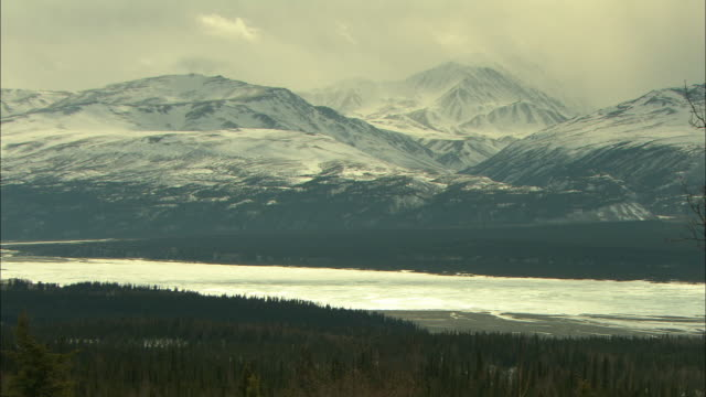 snowy mountains and dense evergreen forests line an alaskan shoreline. - mountain range stock videos & royalty-free footage