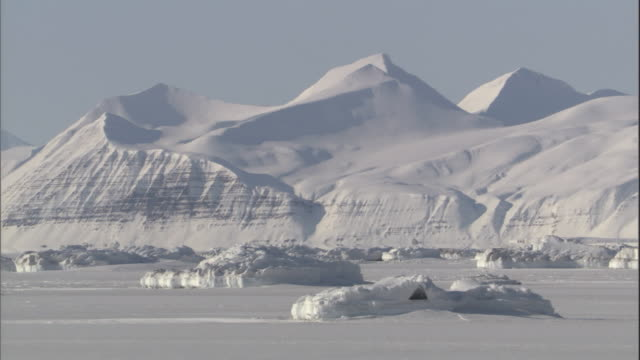 snowy mountains and mounds of ice rise above an ice field. - svalbard and jan mayen stock videos & royalty-free footage