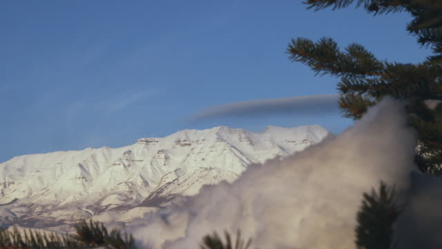 ws snowy mountains with pine tree in foreground, orem, utah, usa - orem stock-videos und b-roll-filmmaterial