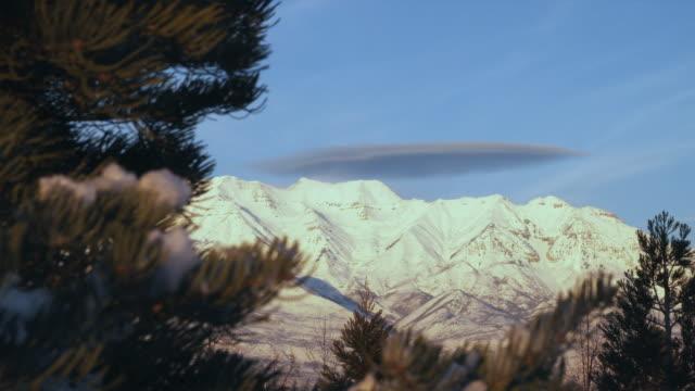 ws snowy mountains with pine tree in foreground, orem, utah, usa - orem utah stock videos & royalty-free footage