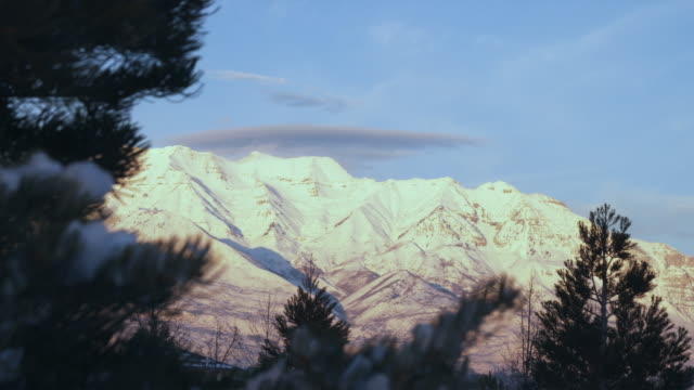 vidéos et rushes de ws snowy mountains with pine tree in foreground, orem, utah, usa - orem