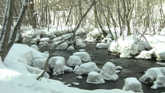 snowy oirase stream in winter, aomori, japan - oirase river stock videos & royalty-free footage