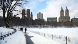 Snowy Path In Central Park