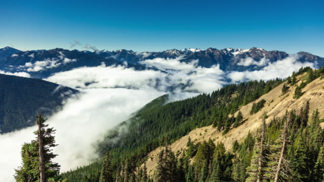 Snowy Peaks and Cloud Filled Valleys in Olympic National Park - Time Lapse