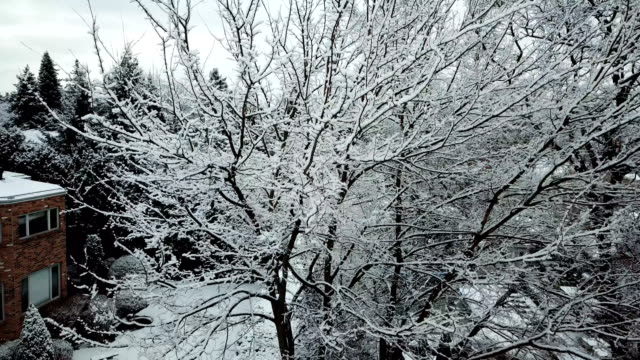 snowy residential avenue - deep snow stock videos & royalty-free footage