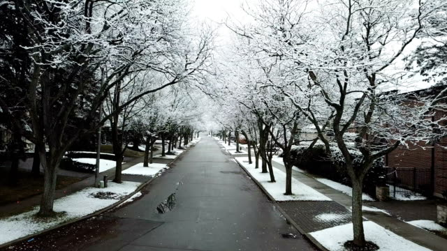snowy residential avenue - ocean avenue stock videos & royalty-free footage