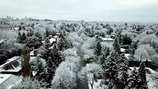 snowy residential avenue - avenue stock videos & royalty-free footage