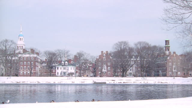 snowy riverbanks flank the campus of harvard university. - new england östra usa bildbanksvideor och videomaterial från bakom kulisserna