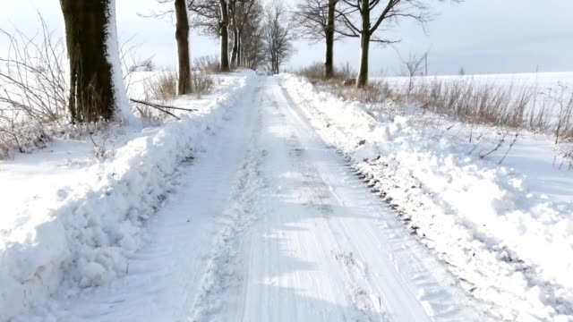 Snowy road in the sun