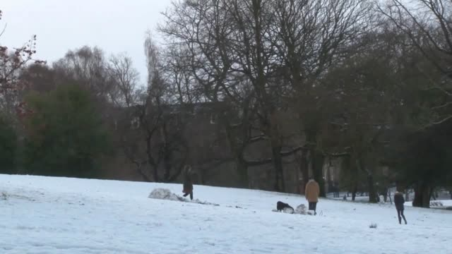 A snowy scene in Kelvingrove Park Glasgow Dozens of schools have been closed in parts of Scotland while public transport has been disrupted by the...