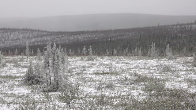 Snowy subarctic tundra Dempster Highway Eagle Plain Plateau Ogilvie Mountains Yukon