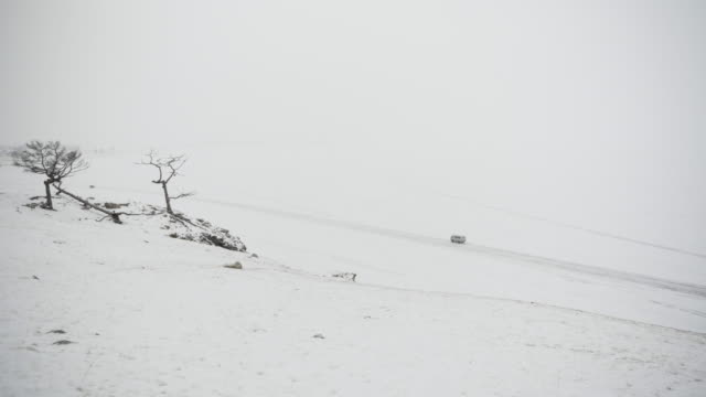 snowy weather on the island of olkhon, lake baikal. - frozen stock videos and b-roll footage