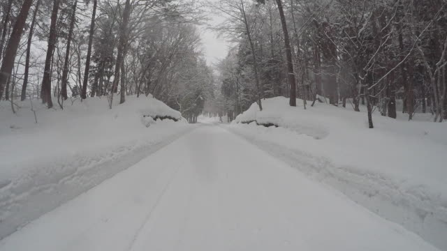 snowy winter road drive - strada in terra battuta video stock e b–roll