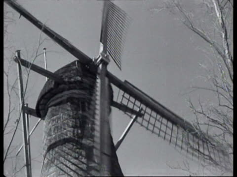 snuff being produced in mill by workers two men sniffing tobacco / netherlands - mill stock videos & royalty-free footage