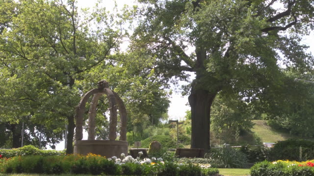 """so called """"luther oak"""" / """"luthereiche"""" with paul friedrich fountain fountain - 宗教的指導者 マルティン・ルター点の映像素材/bロール"""