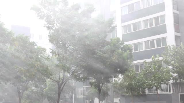 So heavy rain that to blur the lens.