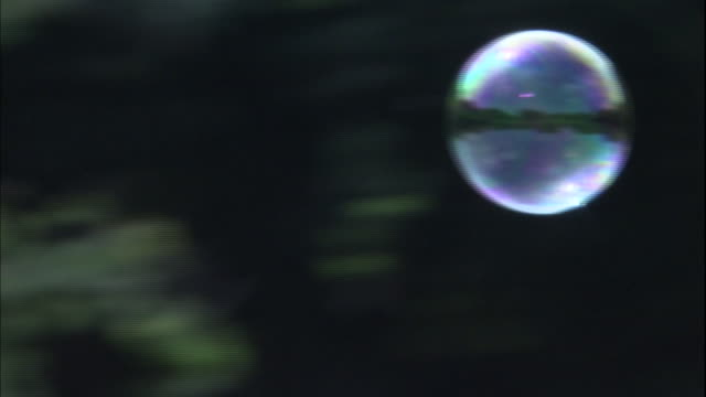 A soap bubble floats through Yoyogi Park in Japan.