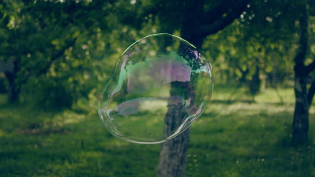 soap bubbles in the garden - bubble stock videos & royalty-free footage