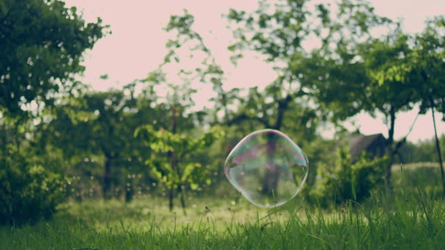 soap bubbles in the garden - orchard stock videos & royalty-free footage