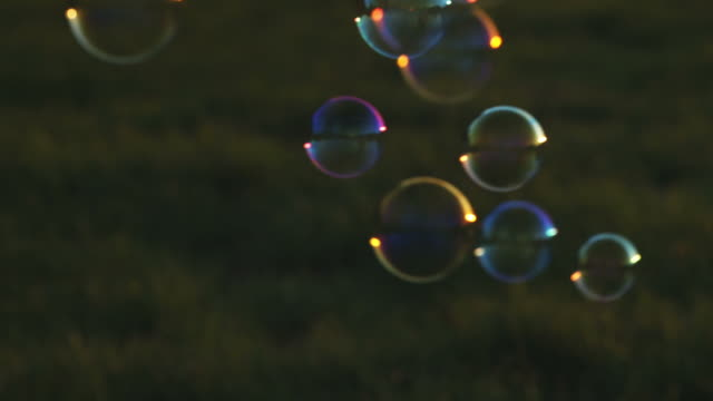 Soap bubbles on meadow