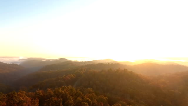 soaring over appalachian wilderness sunrise in kentucky - appalachian mountains stock videos & royalty-free footage