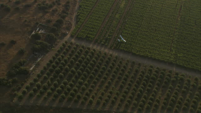 a uav soars over farmland in israel. - israele video stock e b–roll