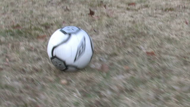 soccer ball 2 - multi-format progressive - rolling stock videos & royalty-free footage