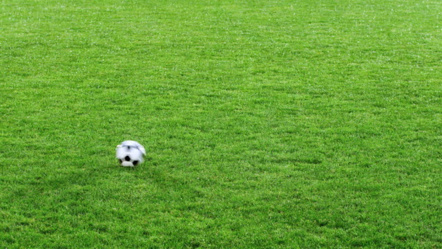 ms soccer ball kicked on field - football pitch stock videos & royalty-free footage