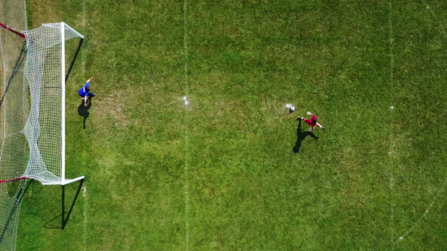 vídeos de stock e filmes b-roll de soccer goalkeepers - penalty kick, bird eye view - campo de futebol