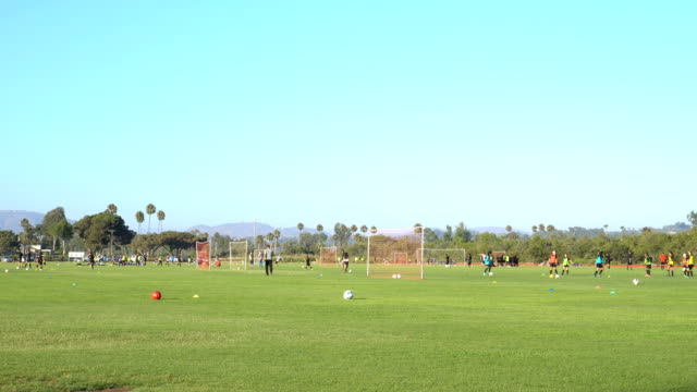 4k soccer practice - summer camp stock videos & royalty-free footage