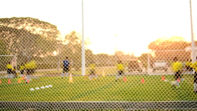 soccer practice with sunset - football pitch stock videos & royalty-free footage