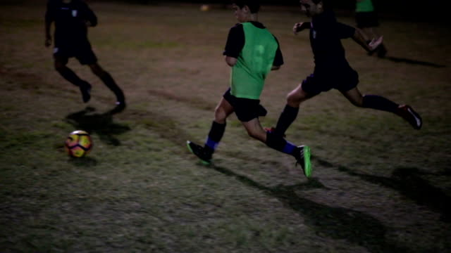 vídeos de stock e filmes b-roll de soccer training drill - football