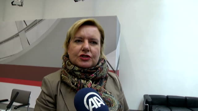 stockvideo's en b-roll-footage met social democratic party deputy eva hoegl states that the first meeting of the investigative commission for former social democratic party deputy... - kinderporno