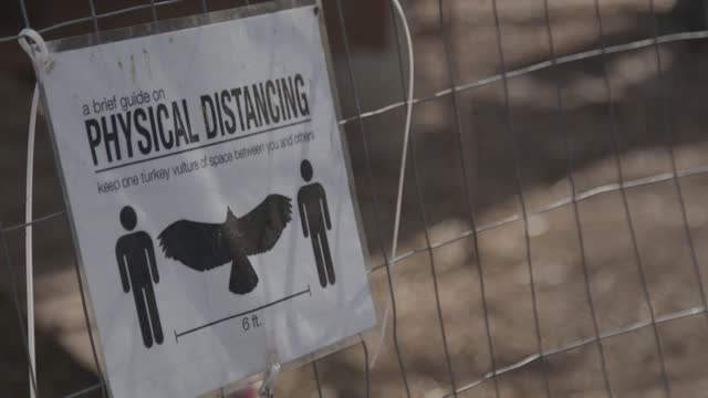 social distancing sign is posted at the willow grove nature education center at cromwell valley park during the covid-19 pandemic on easter, april 4,... - animal family stock videos & royalty-free footage