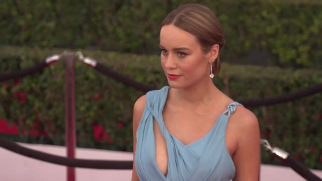 Social Media Edit 22nd Annual Screen Actors Guild Awards Arrivals at The Shrine Auditorium on January 30 2016 in Los Angeles California