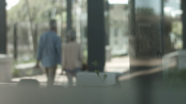 soft focus, elderly couple walk outside with suitcases - soft focus stock videos & royalty-free footage