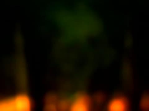 stockvideo's en b-roll-footage met soft-focus foliage - softfocus