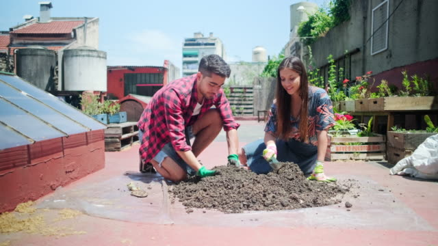 boden wird für die bepflanzung im dachgarten vorbereitet - gartenhandschuh stock-videos und b-roll-filmmaterial