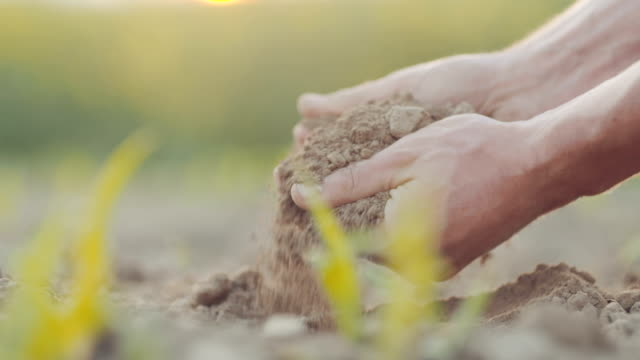 Soil in farmer hands. AGRICULTURE.