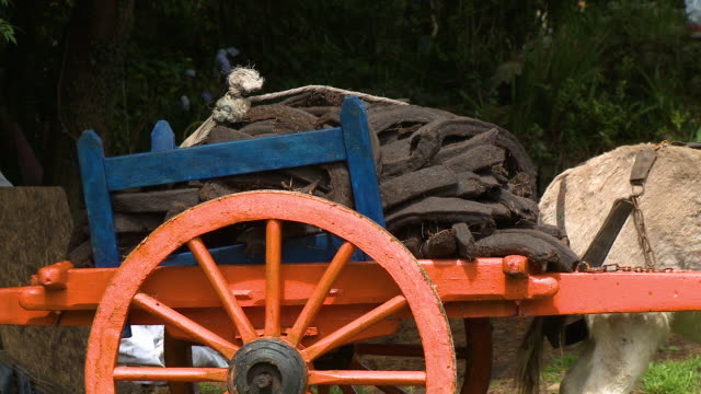 soil pile on wooden cart - maultier stock-videos und b-roll-filmmaterial