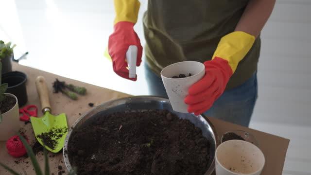 soil preparation - spray cleaner stock videos & royalty-free footage