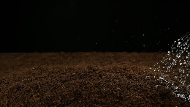 soil watering against black background, slow motion 4k - watering can stock videos & royalty-free footage