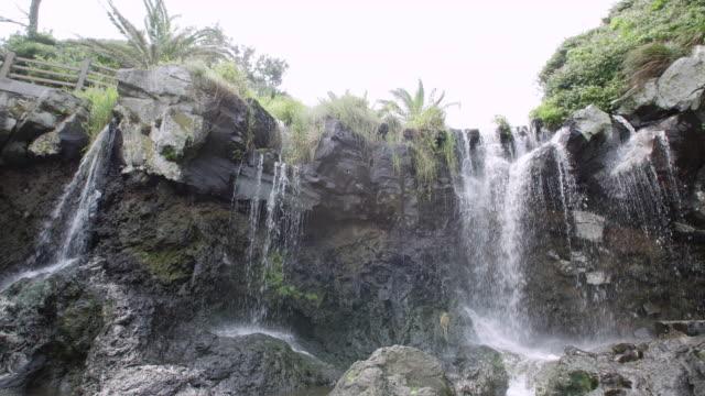 vidéos et rushes de sojeongbang waterfall (famous tourist attraction) in jeju island - vue en contre plongée