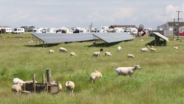a solar farm next to a caravan park on walney island barrow in furness cumbria uk - fuel and power generation stock videos & royalty-free footage