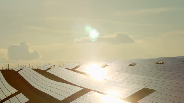 PAN Solar Panels Reflecting The Evening Sun