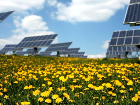 solar park in spring - wiese stock videos & royalty-free footage
