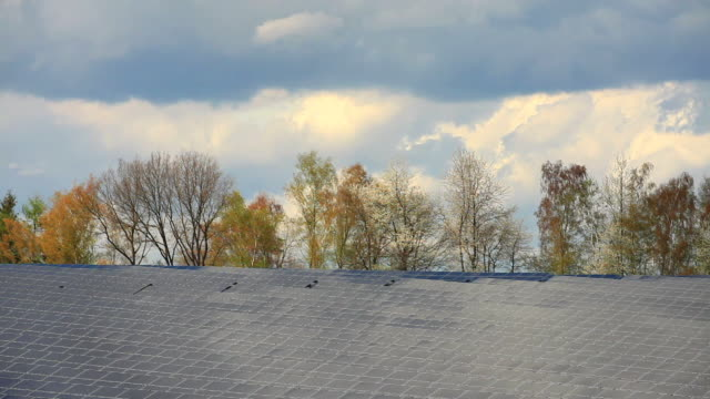 T/L Solar Power Plant In Front Of Trees In Early Spring