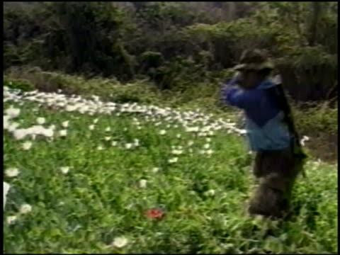 WS soldier destroying poppies in field
