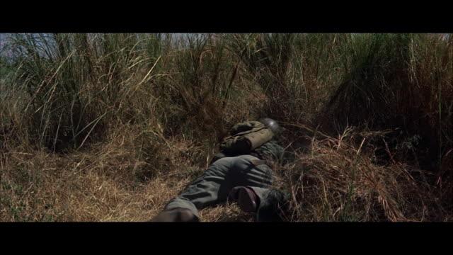 stockvideo's en b-roll-footage met ms tu soldier snaking through tall grass - breedbeeldformaat